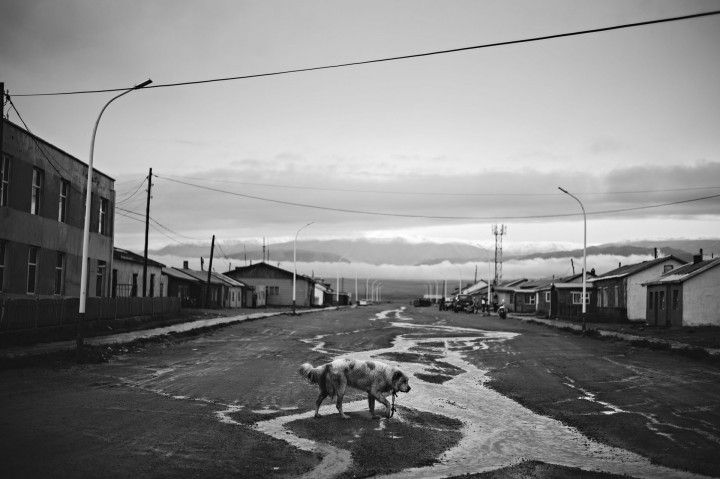 Fotografía © Walter Astrada, Darvi, MONGOLIA
