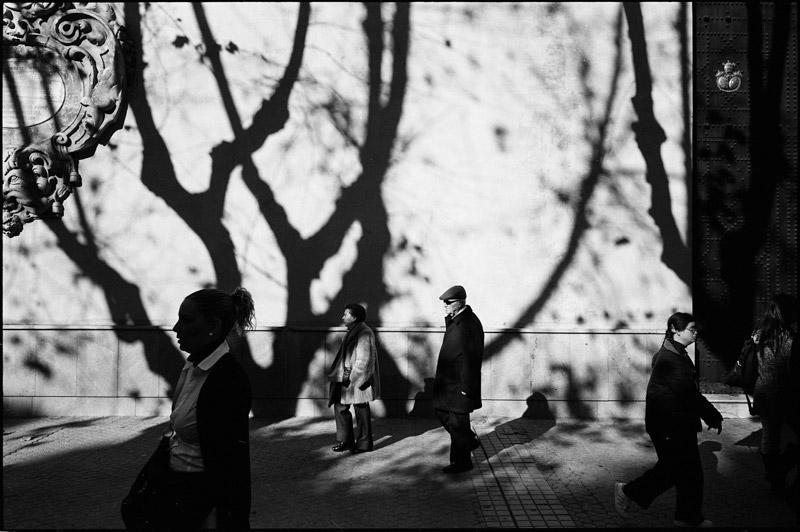 © Fotografía Luis Corrales, Sevilla