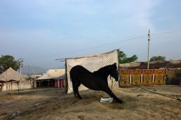 Fotografía © Graciela Magnoni. India 2016.